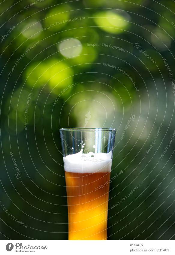 Biergarten kalt natürlich Gesundheit Garten Glas frisch genießen Ernährung Getränk rein Gastronomie lecker Bioprodukte Alkohol Vorfreude