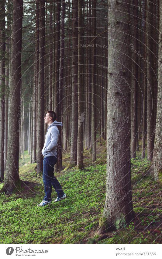 In the woods I Mensch maskulin Junger Mann Jugendliche Erwachsene Körper 1 13-18 Jahre Kind 18-30 Jahre Natur Landschaft Baum Wald Jeanshose Pullover Turnschuh