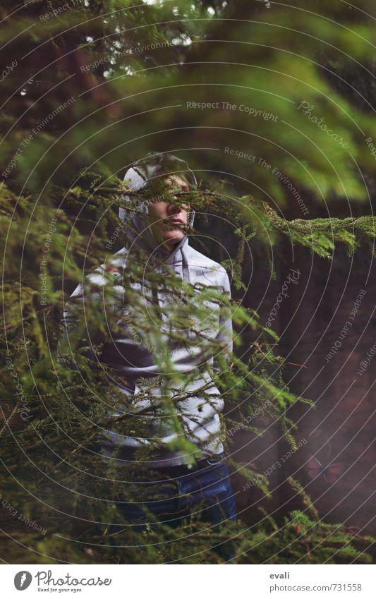 In the woods III Mensch Kind Natur Jugendliche Mann grün Baum Erholung 18-30 Jahre Junger Mann dunkel Wald Erwachsene Gesicht grau Stimmung