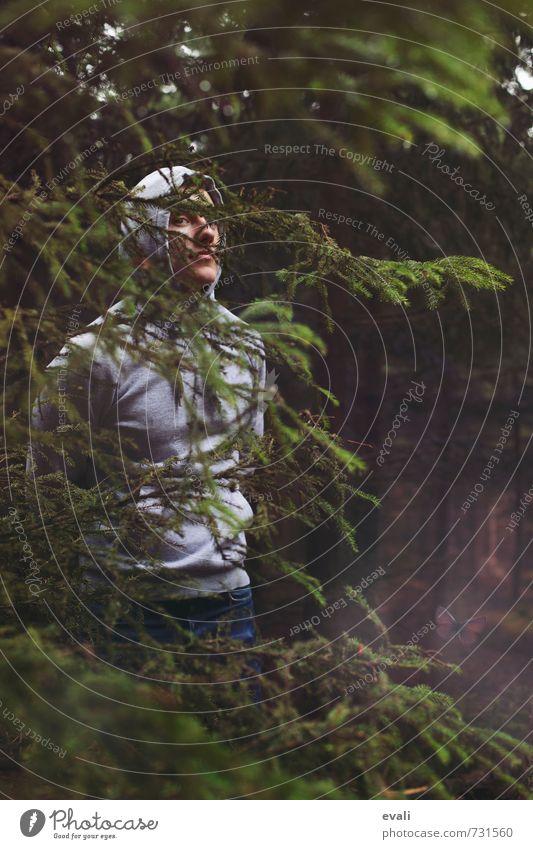 In the woods II Mensch Kind Natur Jugendliche Mann grün Baum 18-30 Jahre Junger Mann dunkel Wald Erotik Erwachsene Gesicht Auge grau