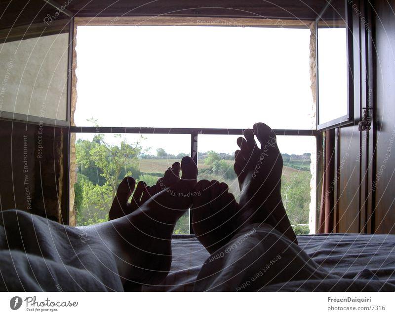 Guten Morgen! Mensch Ferien & Urlaub & Reisen Fenster Freiheit Paar Fuß 2 Zusammensein Freizeit & Hobby offen liegen frei paarweise schlafen Zukunft Bett