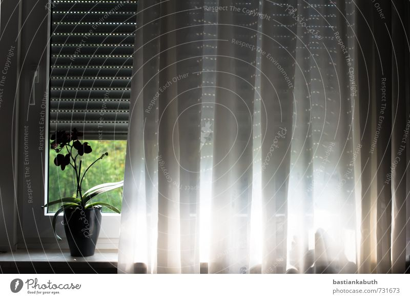 Zeit zum Aufstehen... Gebäude Fenster Glas Kunststoff dunkel frisch Unendlichkeit hell kalt nah trist blau grau grün Sicherheit Schutz Angst Ferne