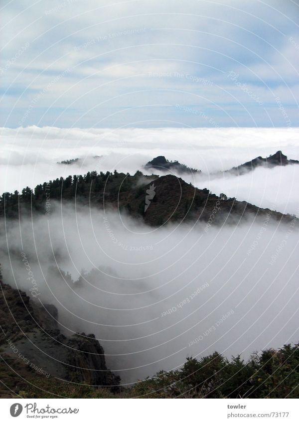 Über den Gipfeln und Wolken blau weiß Wolken Ferne Berge u. Gebirge oben grau Nebel groß Gipfel Spanien Nebelwald La Palma