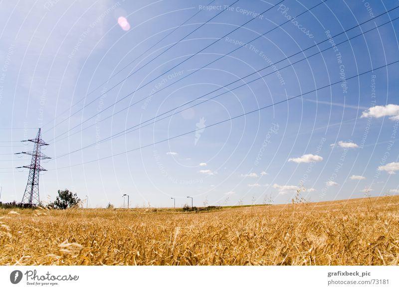 feldidylle 2 blau Sommer ruhig Wolken Ernährung Erholung Freiheit Wärme Landschaft Feld Lebensmittel gold Elektrizität Technik & Technologie Physik Idylle