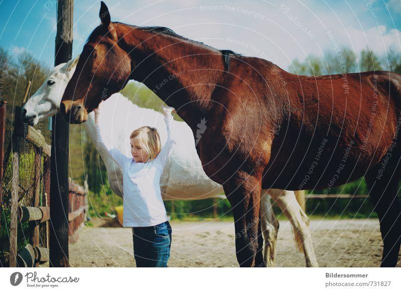 aiming high Mensch Kind Ferien & Urlaub & Reisen weiß Erholung Mädchen Tier feminin braun Idylle Kindheit Fröhlichkeit Ausflug berühren Sauberkeit Lebensfreude
