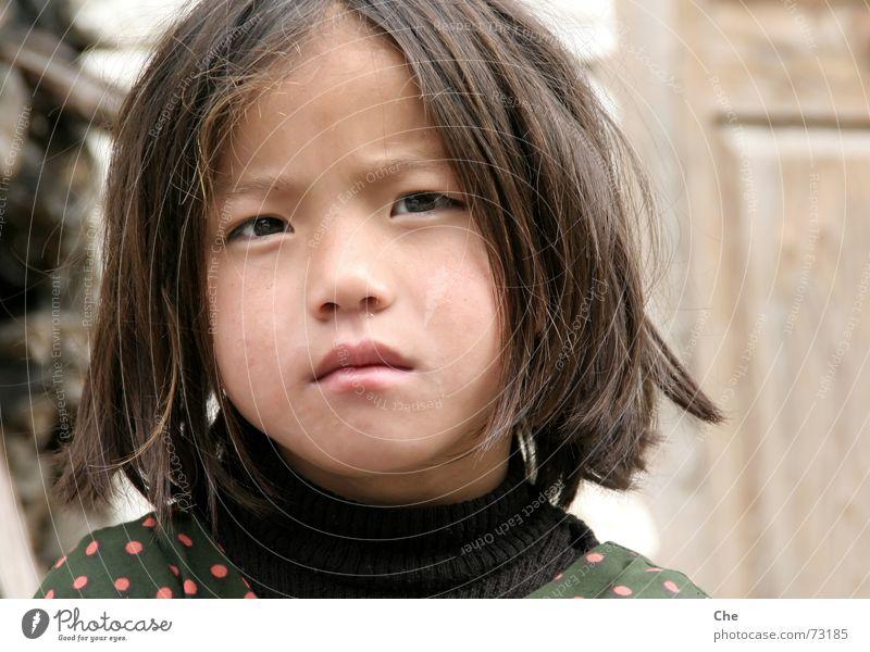 Junges Gesicht mit alten Augen Kind alt schön Gesicht Auge Traurigkeit Denken klein Mund groß süß Lippen niedlich Sorge hart skeptisch