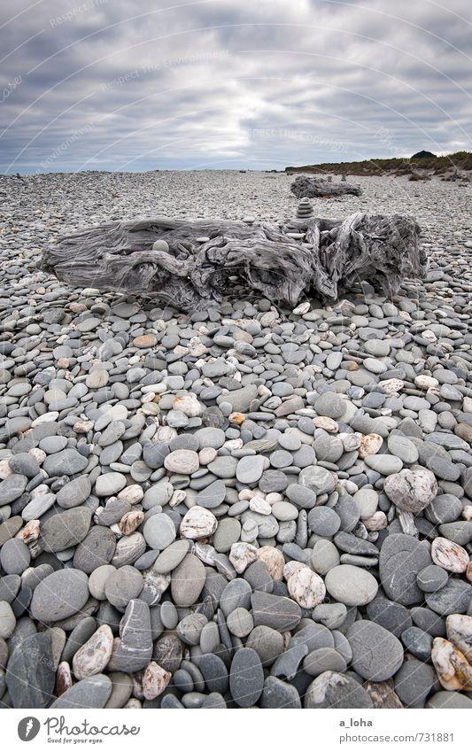 Gillepies Beach Umwelt Natur Landschaft Urelemente Himmel Wolken Gewitterwolken Horizont Herbst schlechtes Wetter Küste Strand Meer Stein Holz grau Fernweh