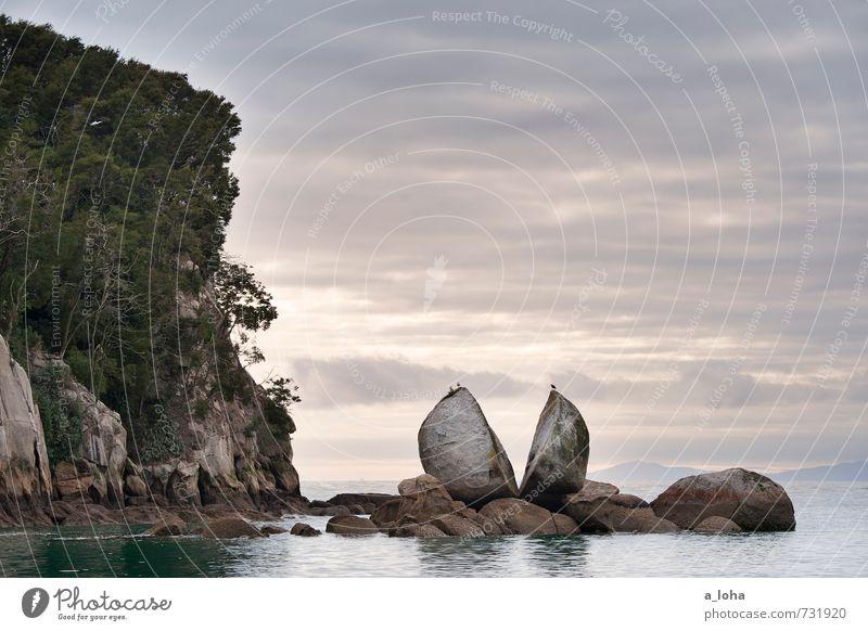 SPLIT AP PLE ROCK Umwelt Natur Landschaft Pflanze Urelemente Wasser Himmel Wolken Horizont Sommer schlechtes Wetter Hügel Felsen Küste Strand Riff Meer Fernweh