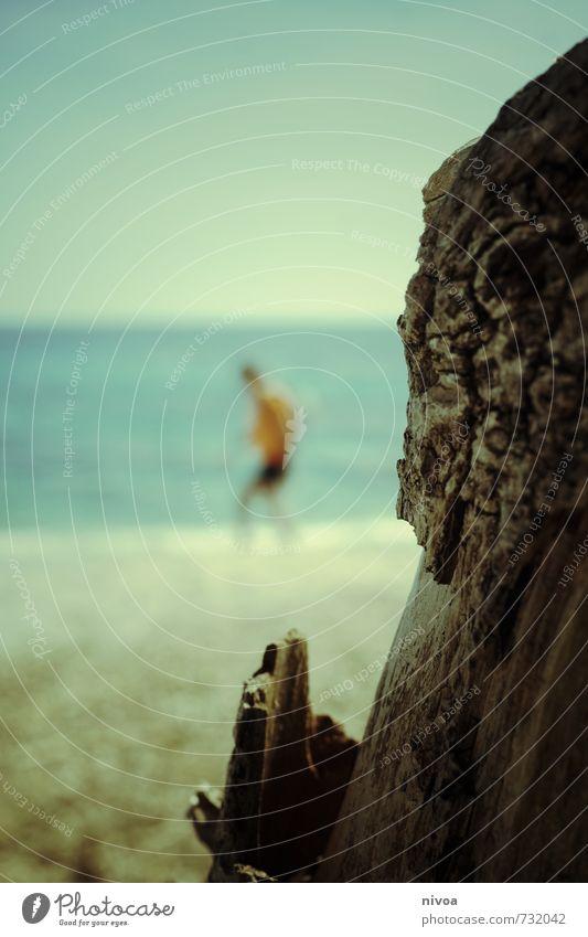 strandläufer Mensch Ferien & Urlaub & Reisen Mann Wasser Sommer Sonne Meer Landschaft Strand Erwachsene Küste Schwimmen & Baden Holz Sand maskulin Körper