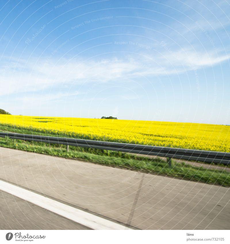 auf dem Weg Umwelt Natur Landschaft Frühling Schönes Wetter Raps Feld Verkehr Verkehrswege Autofahren Straße Wege & Pfade Autobahn Bewegung