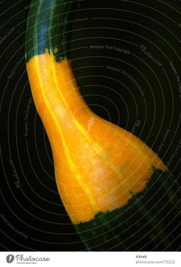 Kelle/Spoon schwarz dunkel Herbst hell orange Dekoration & Verzierung Gemüse krumm gekrümmt Kürbis