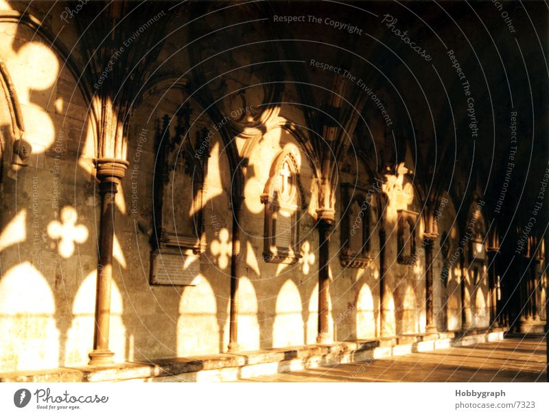 Schattenspiele an der Salisbury Cathedral Stimmung Religion & Glaube Rücken England Kathedrale Gotteshäuser