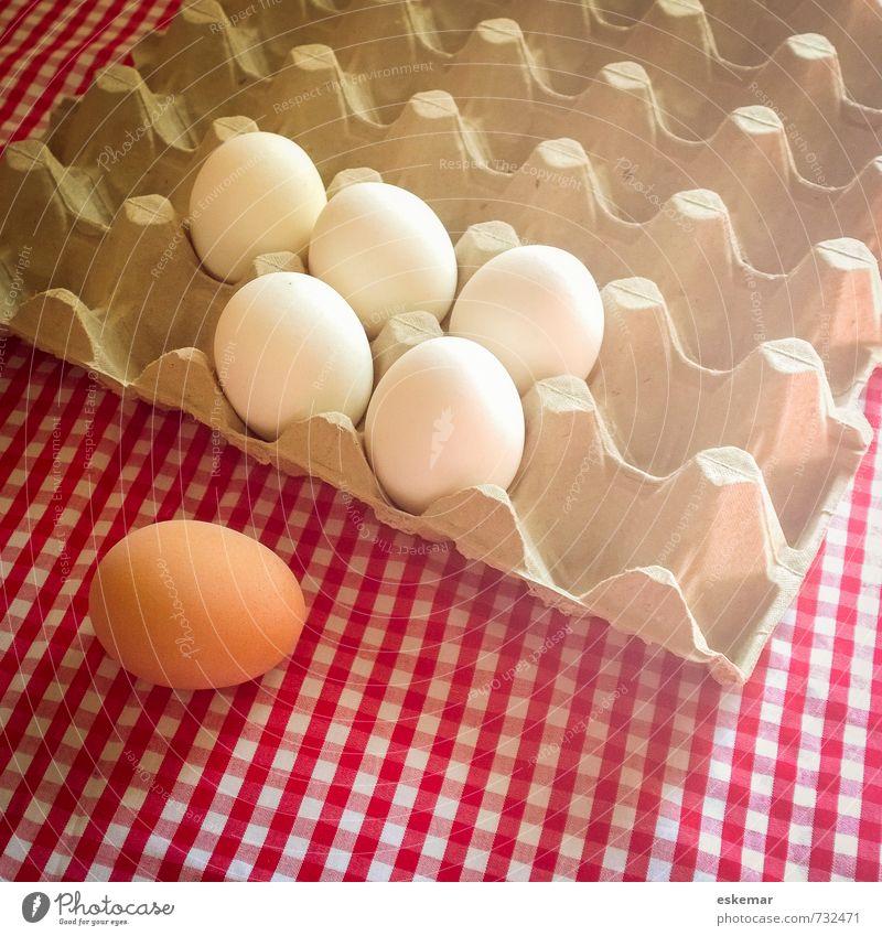 Ei individuell weiß Einsamkeit braun Lebensmittel Ordnung frisch ästhetisch Ernährung Kreativität Idee Wandel & Veränderung einzigartig Ostern Team Bioprodukte