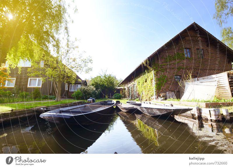 bootsfahrt Ferien & Urlaub & Reisen Tourismus Ausflug Freiheit Sightseeing Seeufer Flussufer Dorf Fischerdorf authentisch Spree Spreewald Fischerboot urig