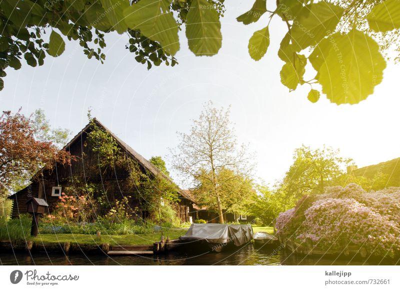 haus am see Natur Sommer Baum Haus Wärme Umwelt See Fluss Sommerurlaub Dorf Teich Bach Holzhaus Einfamilienhaus Fischerdorf Spree