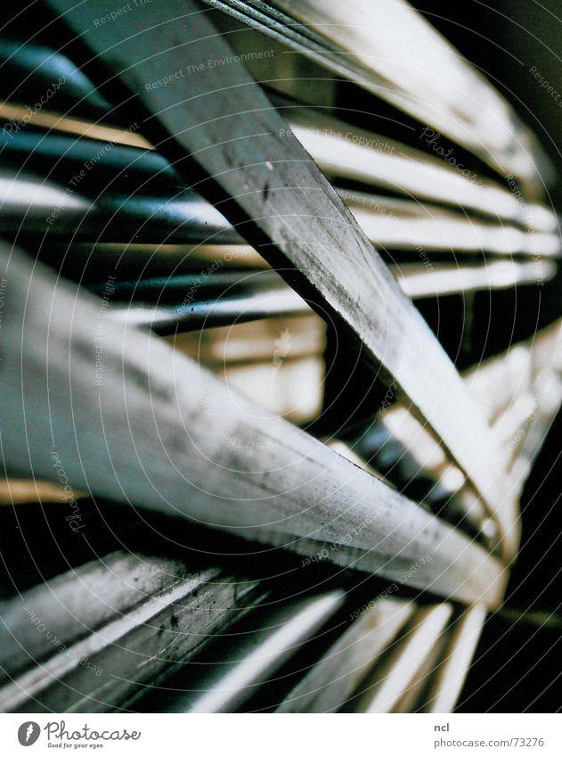 Metallstreifen kalt Industriefotografie Fabrik liegen Streifen Stahl Handwerk Flucht Material Eisen schwer Kunstwerk wickeln Fabrikhalle