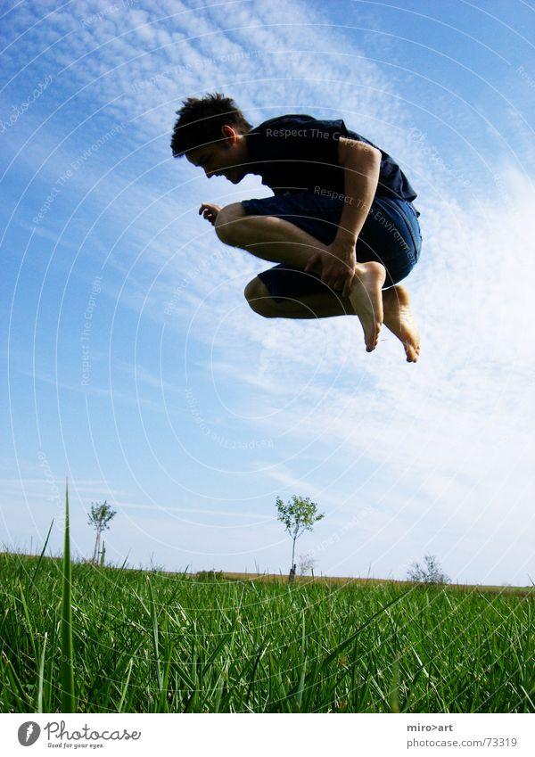 GrasSchwimmer springen grün Wiese Feld verrückt frei Himmel blau Freude lustig Sommer