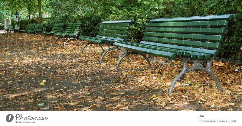 Bank-Park grün Stadt Blatt Herbst Holz sitzen Sträucher Holzbrett Eisen bequem Parkbank unbequem