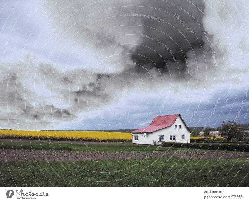 Wetter Sommer Haus Wolken Einsamkeit Feld Angst bedrohlich Bauernhof Landwirtschaft Gewitter Panik Rügen einzeln Raps