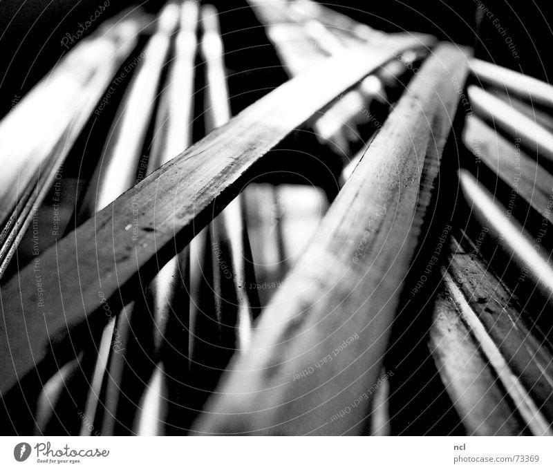Halbzeug weiß schwarz kalt Metall Industriefotografie Fabrik liegen Streifen Stahl Handwerk Flucht Material Eisen schwer Kunstwerk