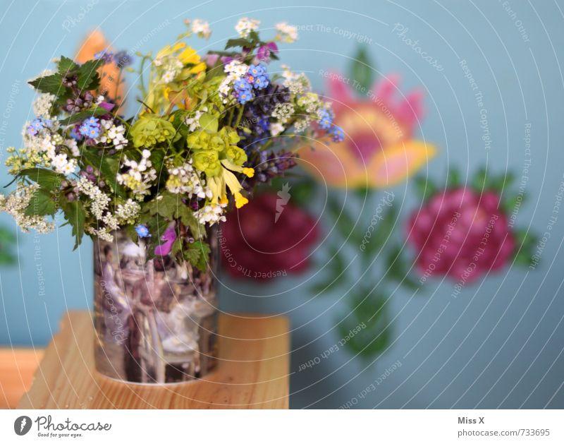Bauernstrauß Wohnung Dekoration & Verzierung Frühling Sommer Blume Blüte Blühend Duft mehrfarbig Landhausstil Vase Blumenstrauß Schlüsselblumengewächse