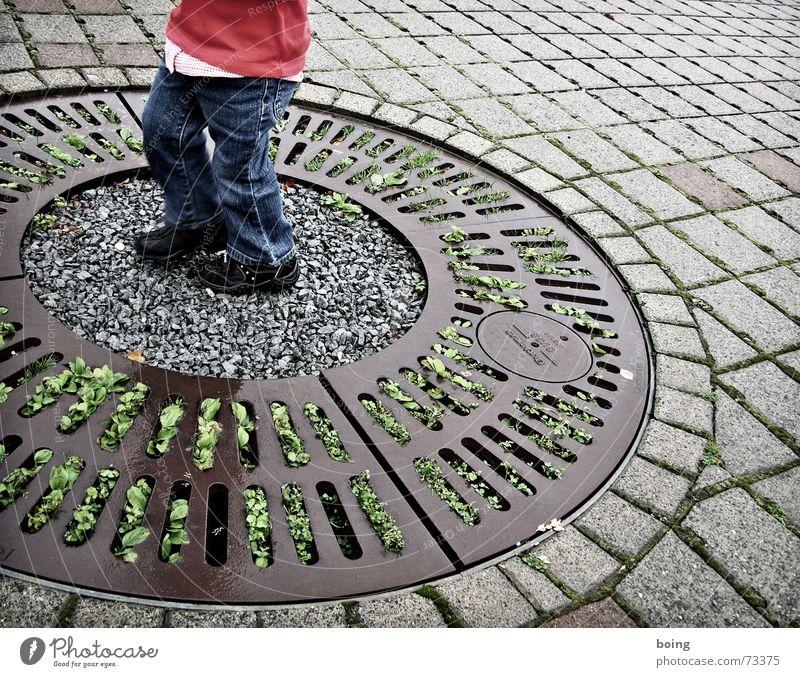 Method Acting: sei ein Parkplatzbaum! Beton Kreis trüb Wachstum gedeihen verwurzelt bodenständig Kind Sportveranstaltung Konkurrenz Spielen Kleinkind