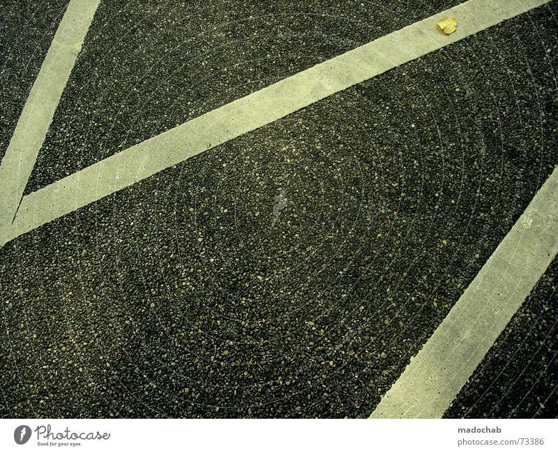 DAS GELD LIEGT AUF DER STRASSE | street grafik design linien weiß Straße dunkel Herbst Stil Stein Linie Schilder & Markierungen Verkehr Ecke trist Streifen