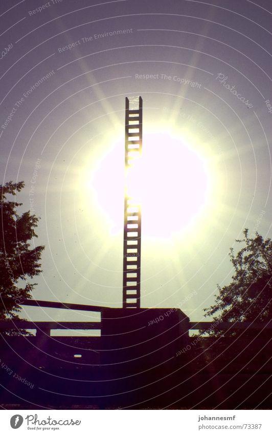 ungeschleustes Licht Schleuse Baum Getriebe Staustufe Sonne Beleuchtung Himmel Abwasserkanal