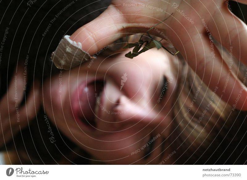 Angriff der Viecher Frau Tier Angst Insekt schreien Gesichtsausdruck Ekel Panik Heftpflaster Frauengesicht Heuschrecke Schädlinge erschrecken Qual