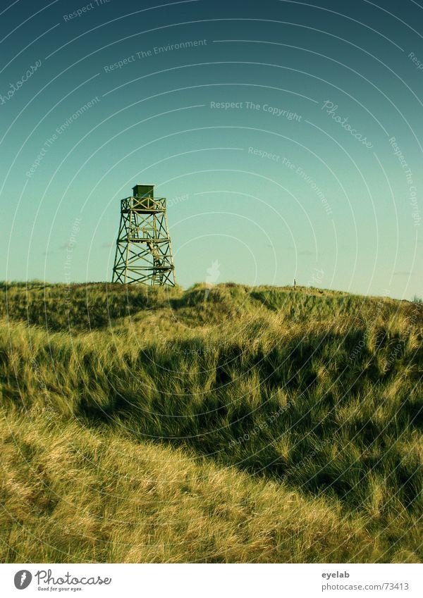 Wachturm auf Hamsterfell Himmel grün blau Ferne Gras Holz Gebäude Aussicht Turm Krieg Stranddüne Holzmehl Wachturm