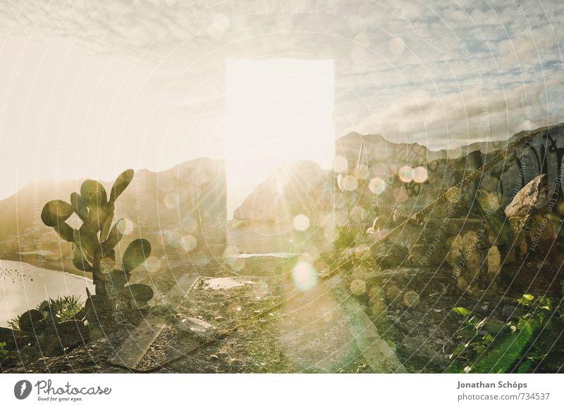 Himmelstür I Umwelt Natur Landschaft Pflanze Felsen Berge u. Gebirge Glück Wahrheit Weisheit Hoffnung Glaube Teneriffa Kanaren Insel Kaktus Erscheinung