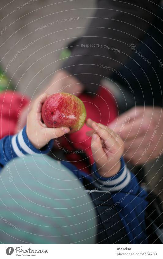 Appletime Lebensmittel Frucht Apfel Gesundheit Gesunde Ernährung Kindererziehung Kindergarten lernen Kleinkind beobachten Essen lecker saftig Hilfsbereitschaft