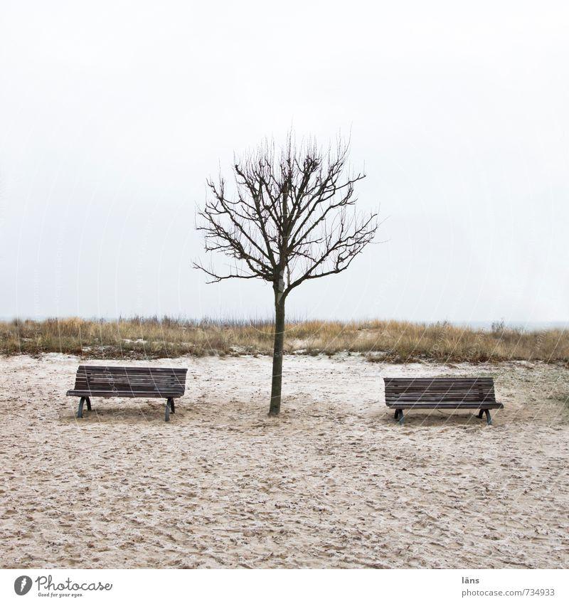 Sandbänke ruhig Strand Umwelt Natur Landschaft Erde Himmel Herbst Winter Baum Ostsee Langeweile Sehnsucht Einsamkeit Zufriedenheit Erwartung Freizeit & Hobby