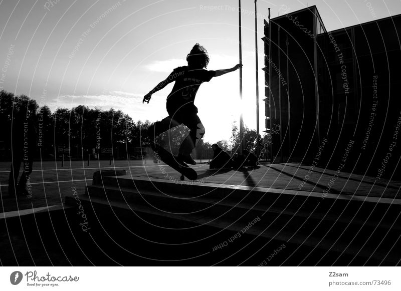 kickflip in the sun II Sonne Sport springen Stil Treppe Aktion Skateboarding Dynamik Salto Trick Funsport Parkdeck Stunt Kickflip