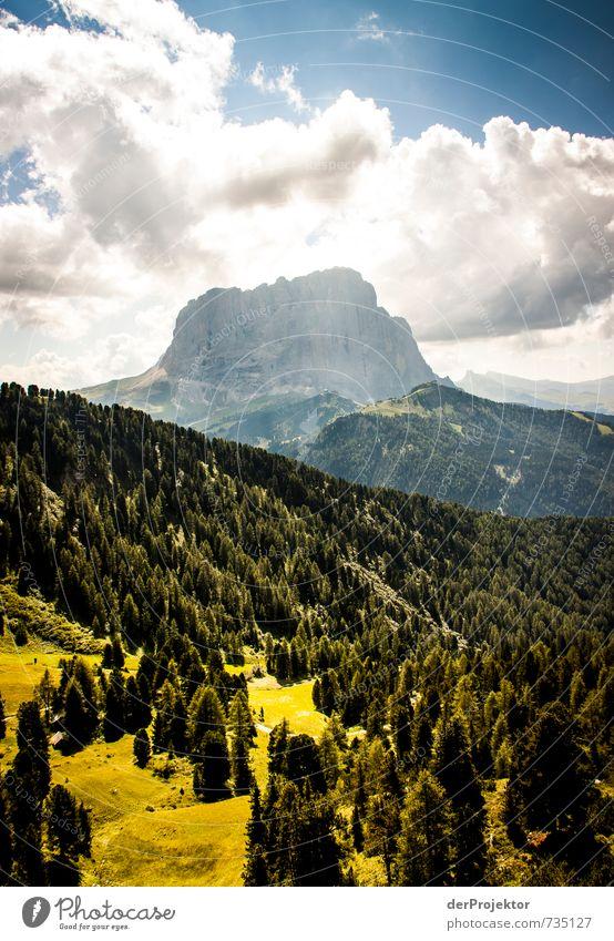 Der Berg ruft in Südtirol Natur Ferien & Urlaub & Reisen Pflanze Sommer Baum Landschaft Wolken Ferne Wald Umwelt Berge u. Gebirge Gefühle Freiheit Felsen