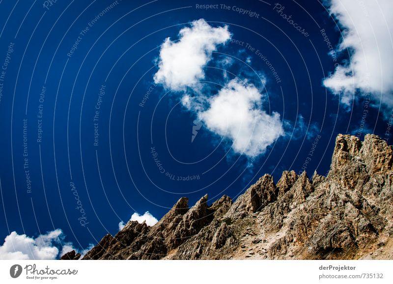 Geiles Wanderwetter Himmel Natur Ferien & Urlaub & Reisen blau Pflanze Sommer Landschaft Wolken Freude Ferne Umwelt Berge u. Gebirge Gefühle Freiheit Glück