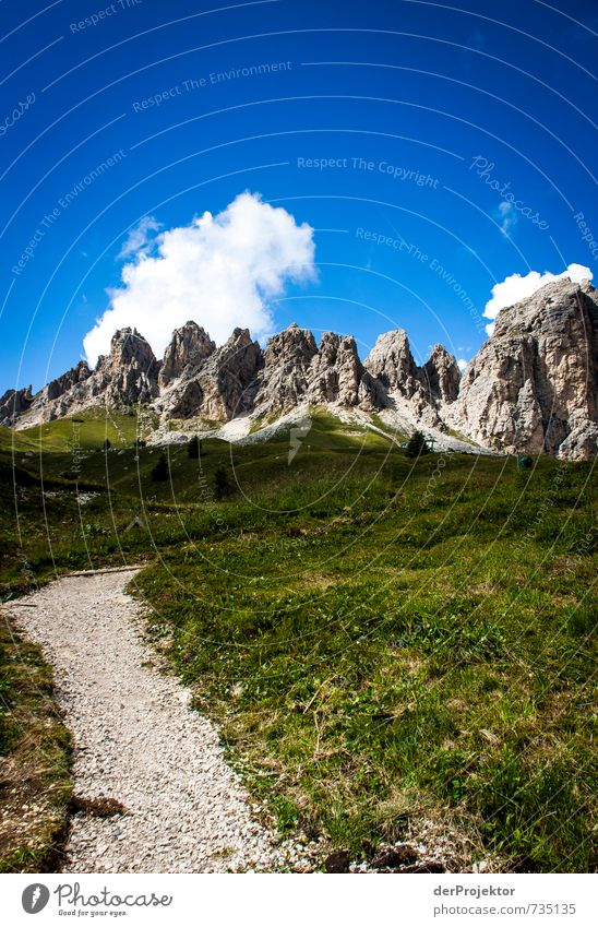 Der Weg ist nicht das Ziel Himmel Natur Ferien & Urlaub & Reisen blau Pflanze Sommer Landschaft Wolken Ferne Umwelt Berge u. Gebirge Gefühle Wege & Pfade