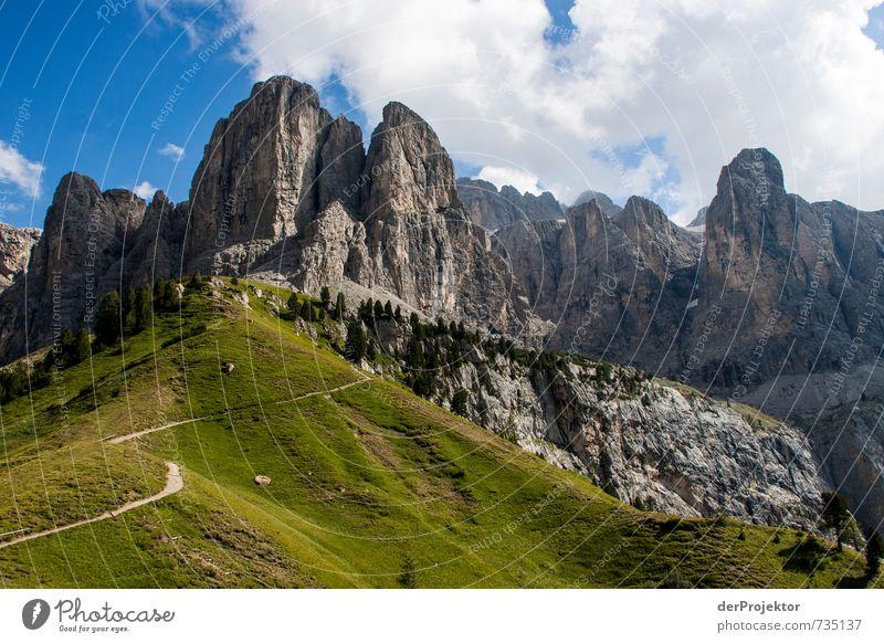 Dieser Weg wird kein leichter sein... Natur Ferien & Urlaub & Reisen Pflanze Sommer Landschaft Wolken Ferne Umwelt Berge u. Gebirge Wege & Pfade Freiheit Felsen