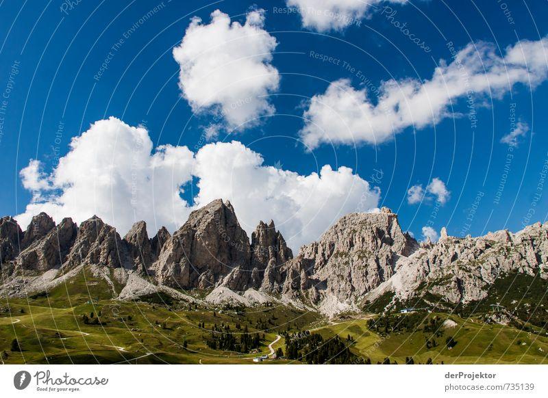 Dolomiten in Grün-Grau-Blau-Weiß Natur Ferien & Urlaub & Reisen Pflanze Sommer Landschaft Freude Ferne Wald Berge u. Gebirge Umwelt Gefühle Glück Freiheit