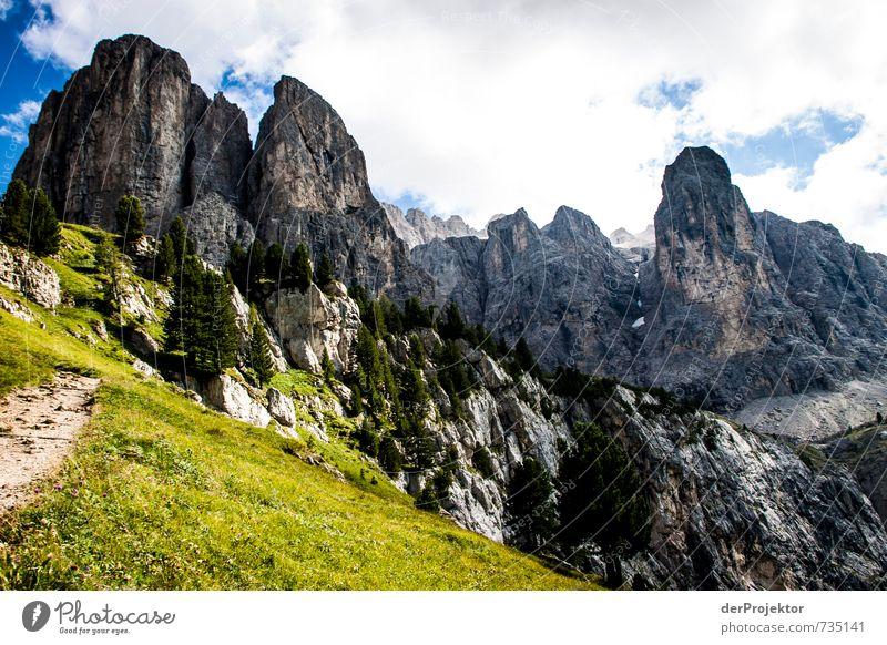 Die Dolomiten rufen Natur Ferien & Urlaub & Reisen Pflanze Sommer Landschaft Wolken Freude Ferne Umwelt Berge u. Gebirge Gefühle Freiheit Glück Felsen