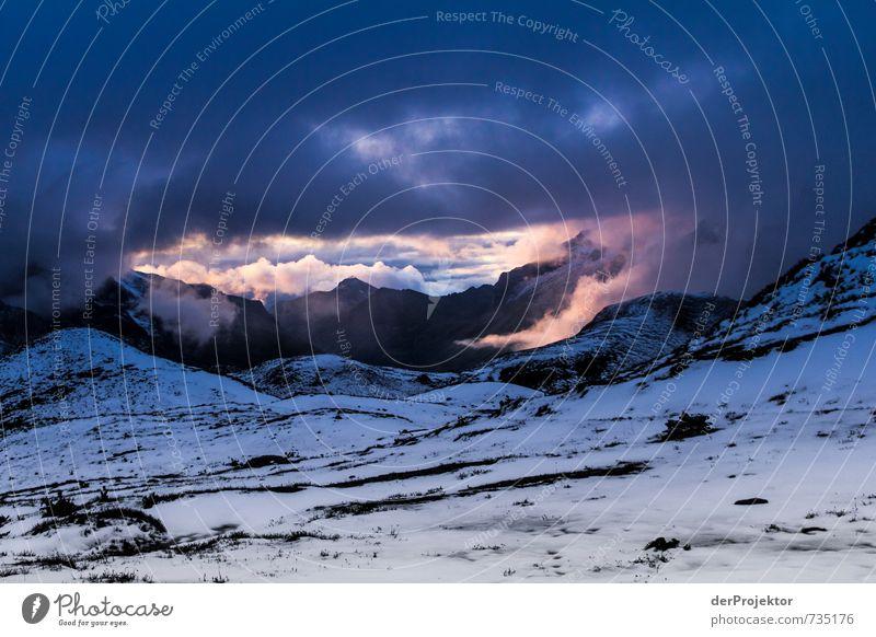 Ein letzter Lichtblick Natur Ferien & Urlaub & Reisen Pflanze Sommer Landschaft Wolken Freude Ferne Umwelt Berge u. Gebirge Schnee Freiheit Felsen