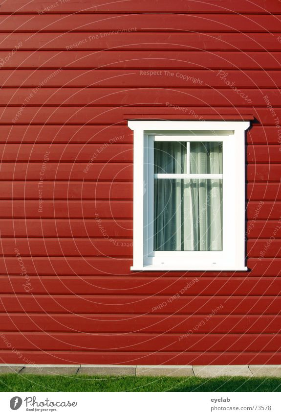 Schwedenschick Fenster Sauberkeit weiß grün rot Haus Holz Holzmehl Gebäude Wand Gardine sweden window clean Rasen grass white red building Garten garden curtain