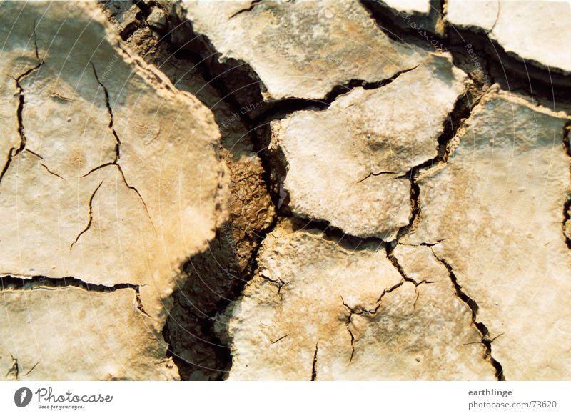 Mini Grand Canyon Graffiti braun Erde kaputt Wüste Sehnsucht trocken Falte Riss Dürre filigran Abwasserkanal Wölbung Querformat