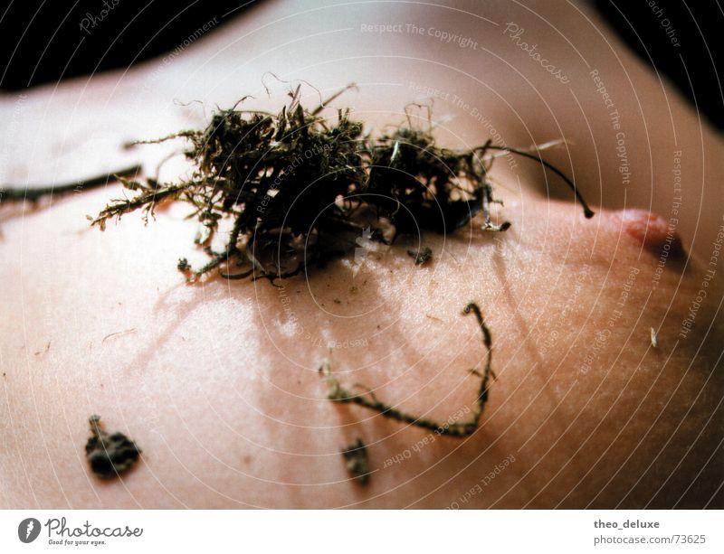 Naturliebe 1 Frau Pflanze Haut Brust Akt