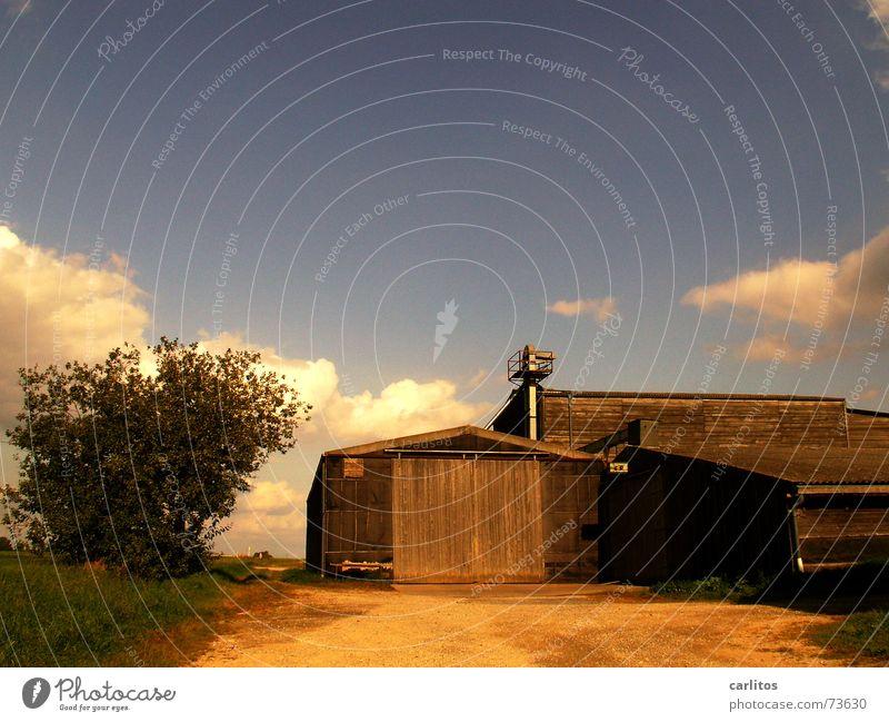Feldscheune Natur Herbst Wärme Physik Scheune Wolkenhimmel Aussiedlerhof