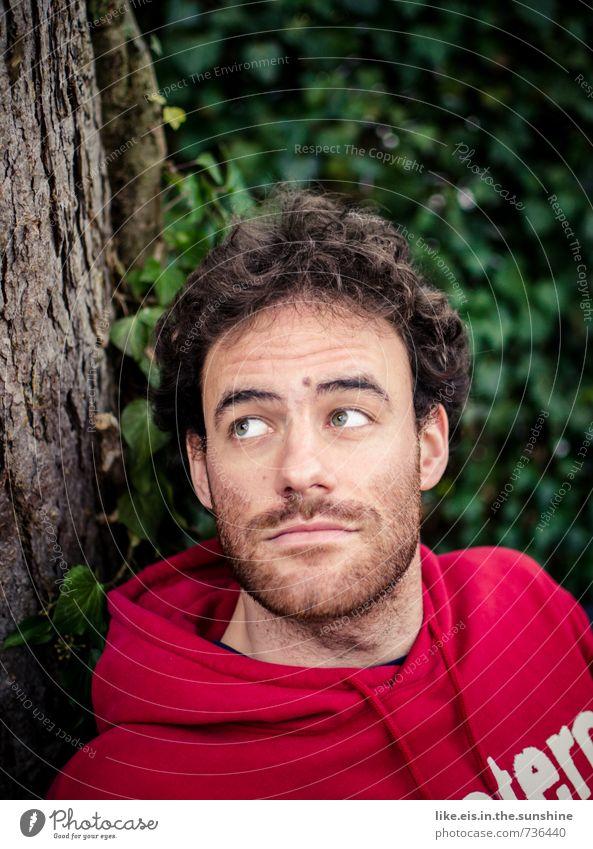 tag im grünen Mensch Natur Jugendliche schön Sommer Baum Erholung ruhig 18-30 Jahre Junger Mann Erwachsene Umwelt Haare & Frisuren Kopf maskulin Zufriedenheit