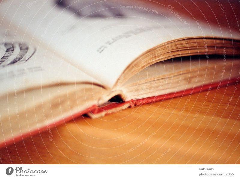 Anatomischer Atlas 01 Mensch alt rot Buch historisch Anatomie