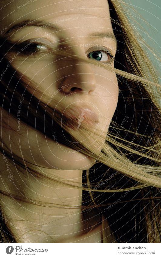 Sinnlichkeit Gesicht Auge Haare & Frisuren Wind blond Model langhaarig