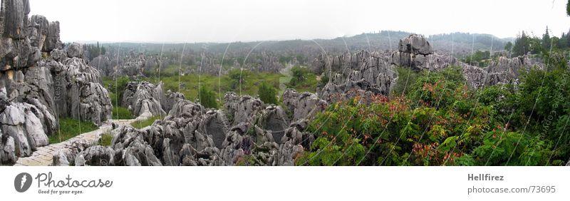 Steinwald Natur Himmel weiß grün Berge u. Gebirge grau Landschaft groß Felsen Aussicht Asien China Bulgarien Panorama (Bildformat) Chinesisch Yunnan