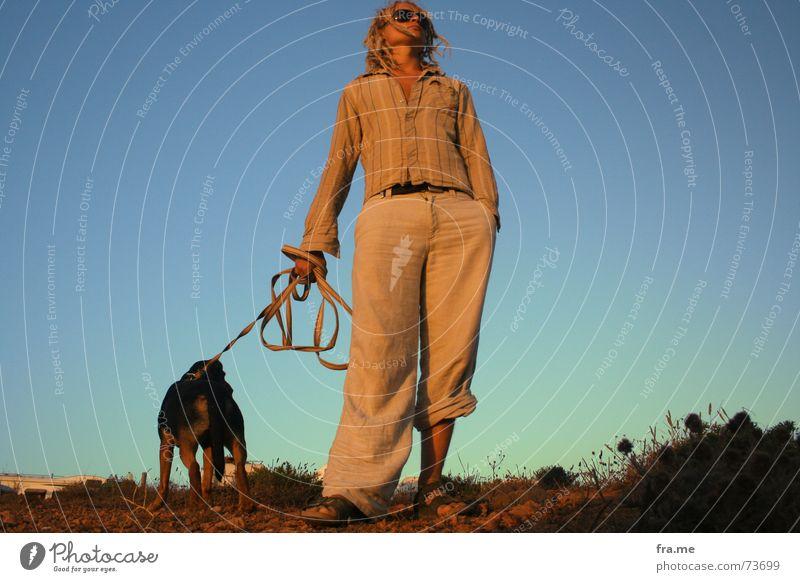 Der Wanderer Mensch Himmel Ferne Hund Denken Landschaft Küste Seil Perspektive Europa beobachten Partnerschaft Portugal Gürtel Koloss Zwerg